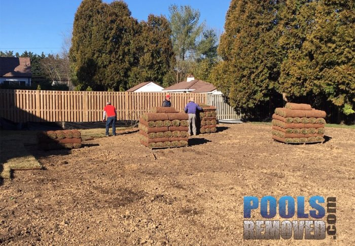 Potomac Maryland Sod Installation and Pool Removal
