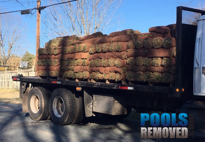 Swimming Pool Removal Sod Installation